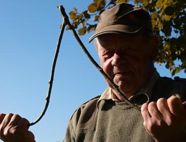 In Wasser aufbewahrt, lässt sich der Eichenzweig rund vier Wochen lang als Wünschelrute benutzen. Danach schneidet sich Heinrich Hövelbernd einfach einen neuen.