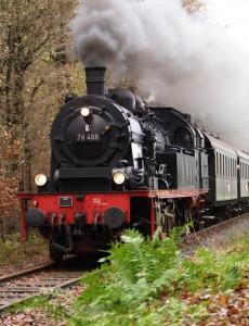 """Durch das Wersener Holz bahnt sich die """"78468"""" ihren Weg zurück nach Mettingen. Foto: Frank Wiebrock"""