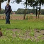 Wie viele Hasen es sich in seinem Garten eingerichtet haben, weiß Karl Mertens nicht. Dafür hat das weitläufige Gelände viel zu viele Verstecke. Foto: Ulrike Havermeyer